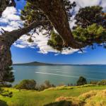 Nova Zelandija morje