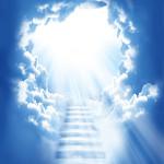 Portali Transcendentalne Hipnoze